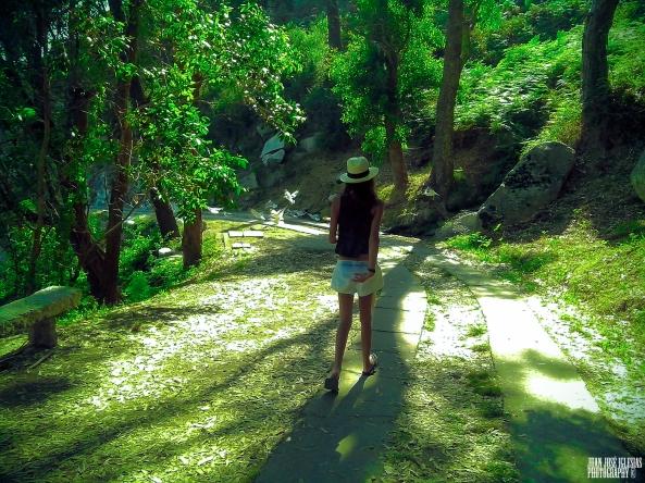 pau caminando por el bosque