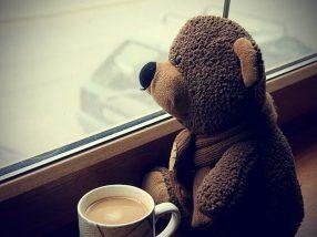 peluche en ventana con cafe